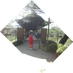 CIMG0461.JPG