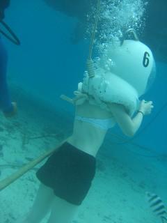 seawalker2.jpg